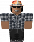 total-robux's picture